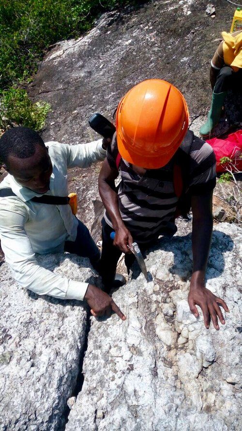 ronidge is investigating multiplescenario small medium and largescale methods to produce a lithium concentrate from the spodumene dominant pegmatite at ape oast in hana