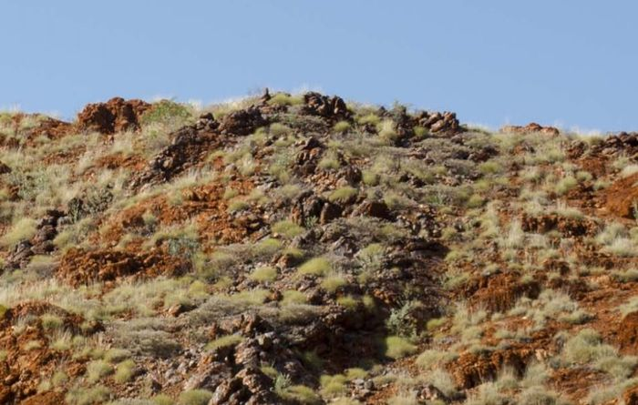 Spinifex Ridge camp a big win for Sulphur Springs