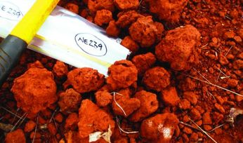 Mining Briefs: Australian Bauxite, Ausmex and more
