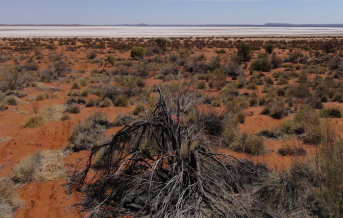 Toro defines incremental improvements at Wiluna