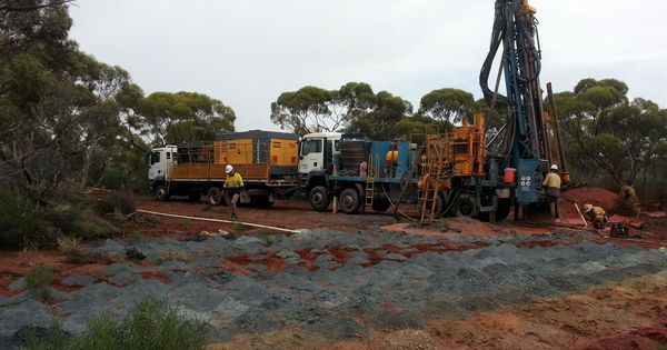Carnavale expands Kalgoorlie nickel hunt - www.miningnews.net