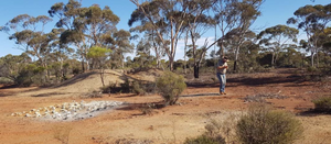 Dampier and Torian tie-up in Eastern Goldfields