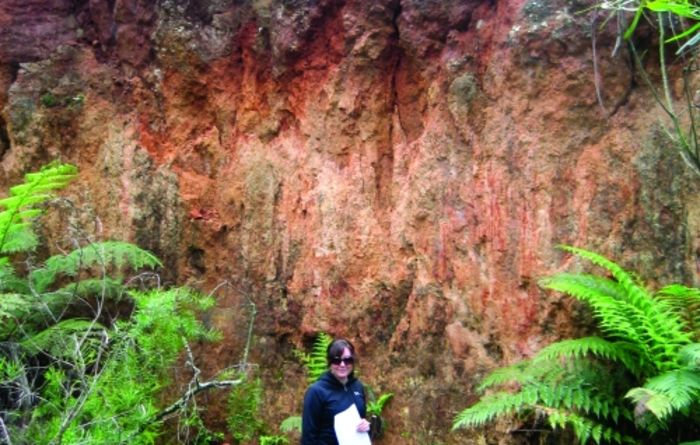 """State significant"" bauxite potential in Tasmania"