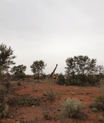 Bellevue eagerly awaiting latest drilling results