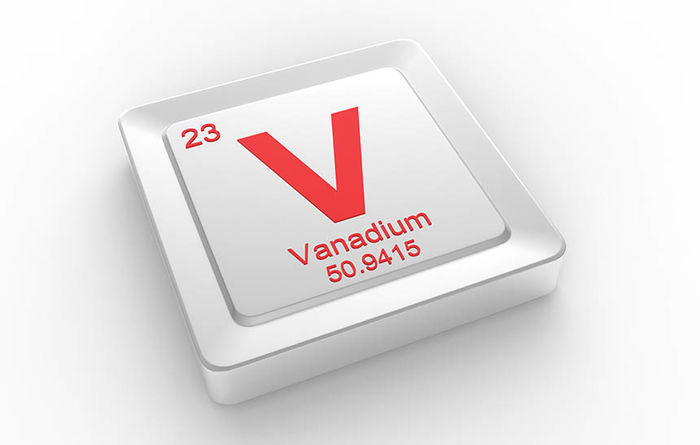 Vanadium minnow scopes Steelpoortdrift potential