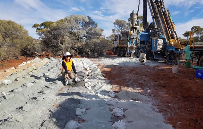 Juniors report separate WA nickel-copper discoveries