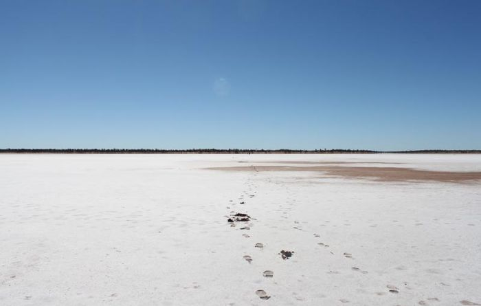 Middlemas and Swiericzuk investing in Salt Lake Potash