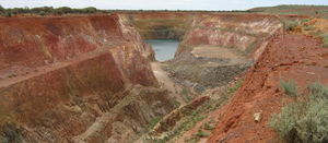 Kin finds Leonora extensions
