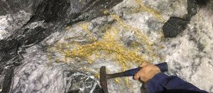 Karora finds gold and nickel at Beta Hunt