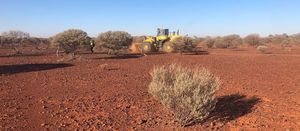 MACA wins iron ore work