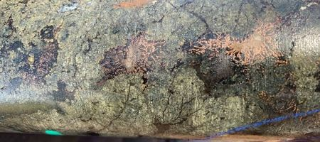 RareX extremely keen on copper-gold porphyry drilling in New South Wales