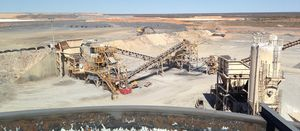 Gold miner WPG collapses