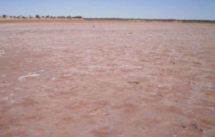 Australian Potash gets nod from Chinese firm
